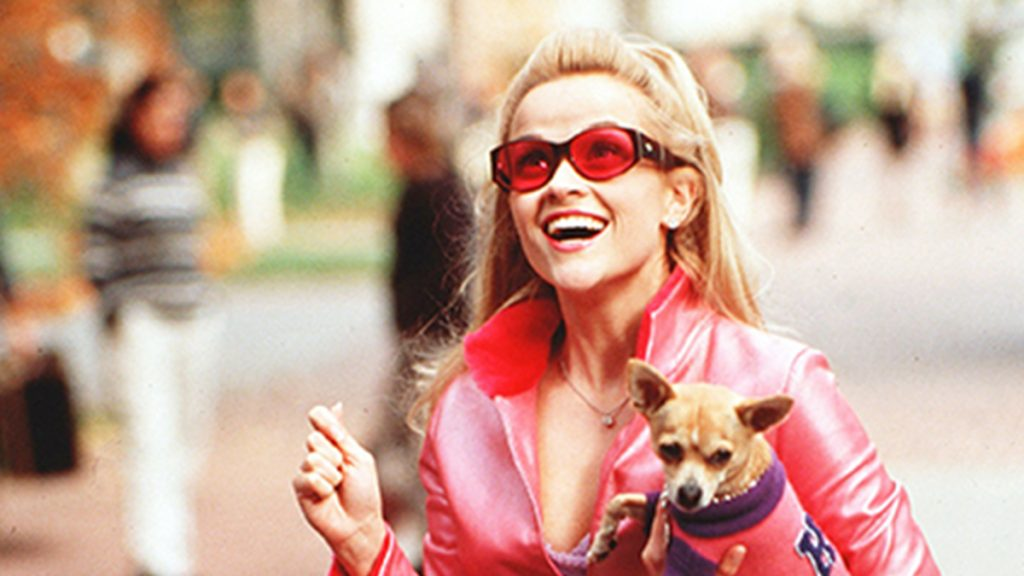 elle woods wears pink jacket and sunglasses holding tiny dog and smiling